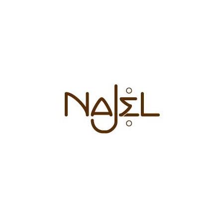 NAJEL_logo